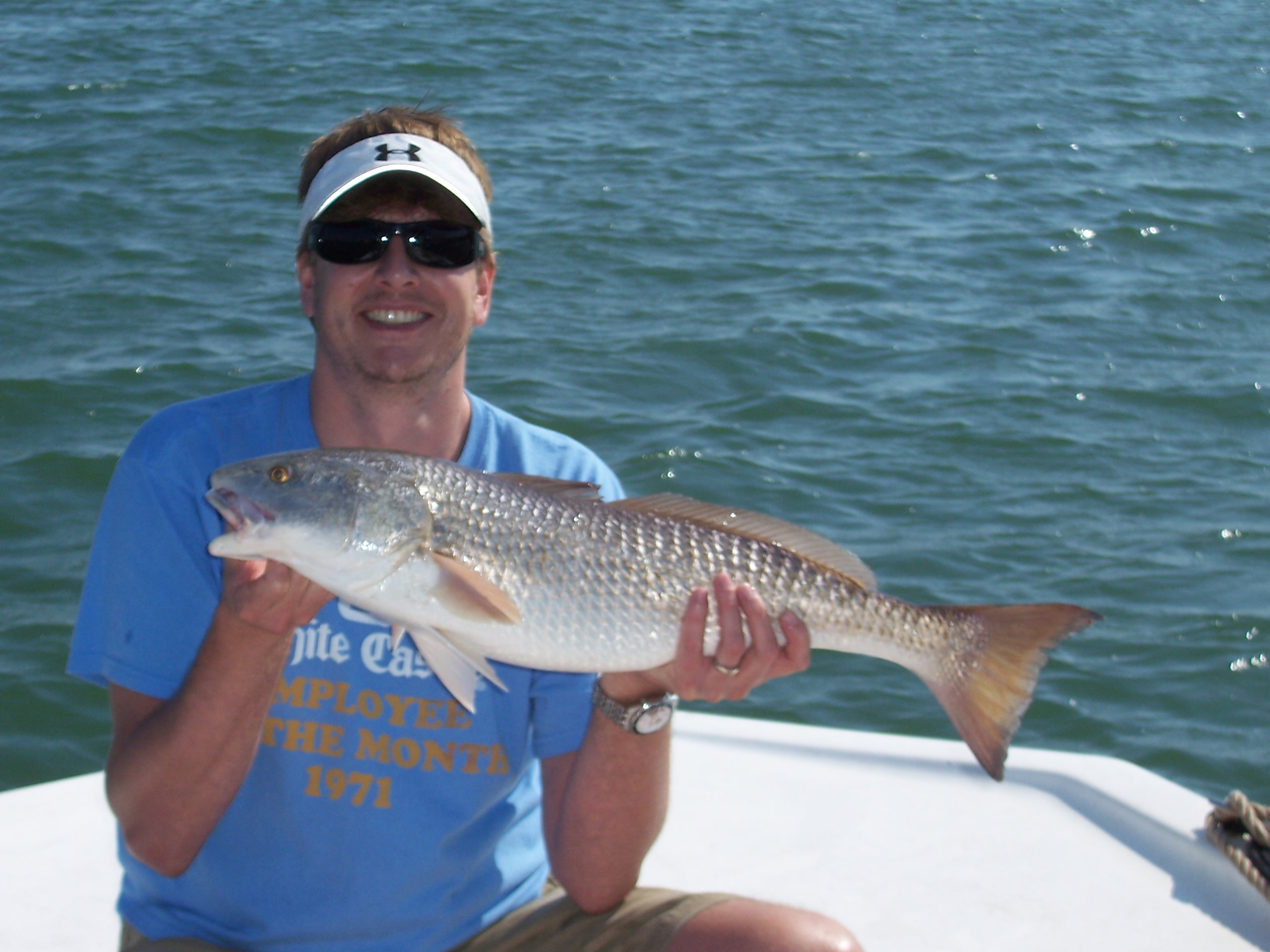 Sarasota florida fishing report rodbender fishing for Sarasota fishing charters